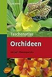 Taschenatlas Orchideen - Mit 340 Pflanzenporträts (Taschenatlanten) - Lutz Röllke