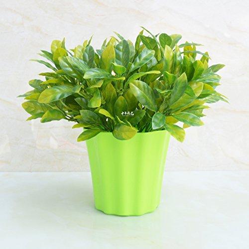 Gardenia-geschenk-set (Simulation Anlage im Innen- und Außenbereich dekorative Kübelpflanzen gardenia Blume, EIN)