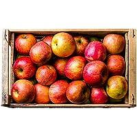 Äpfel Topaz - frisch & knackig vom Bleichhof aus der Pfalz, neue Ernte 2018 (5kg)