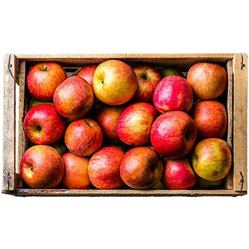 Äpfel Rubinette - frisch & knackig vom Bleichhof aus der Pfalz, neue Ernte 2018 (5kg)
