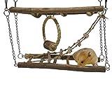 Rosewood 19362 Boredom Breaker Aktivitäts-Hängebrücke für Kleintiere