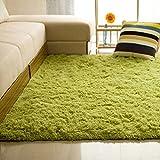 Amesii Casa camera da letto soggiorno tappetini pavimento morbido antiscivolo rettangolo tappeto, motivo: beige 80*120cm Grass Green 80*120cm