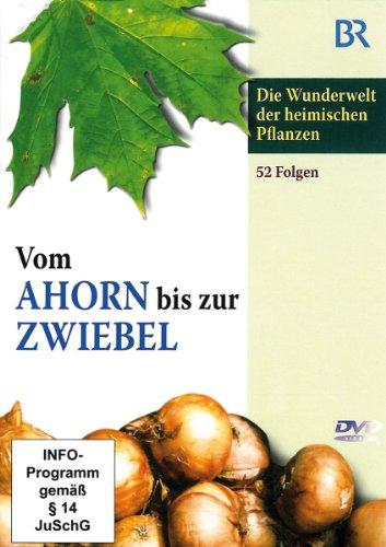 3 DVDs