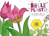 Ohé la Science - Une belle plante