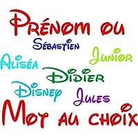 stickers autocollant voiture auto maison prénom ou mot au choix police d'écriture Disney