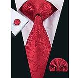 Hi-Tie Wedding Floral Silk Tie Set Woven