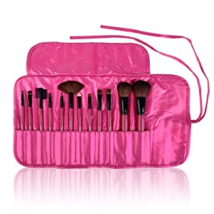 SHANY Professional 12 - Piece Natural Goat and Badger Cosmetic Brush Set with Pouch - Pink by SHANY Cosmetics