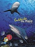 Entdecke die Haie (Entdecke - Die Reihe mit der Eule)