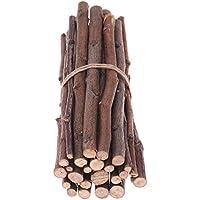 Mascota Snacks manzana palos de madera juguete para ardilla conejos cobayas cerdo chinchilla loros