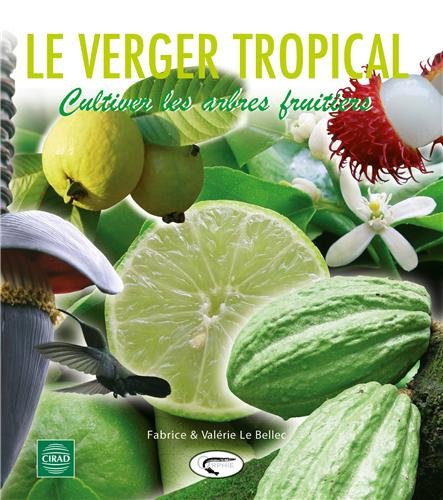le-verger-tropical-cultiver-les-arbres-fruitiers