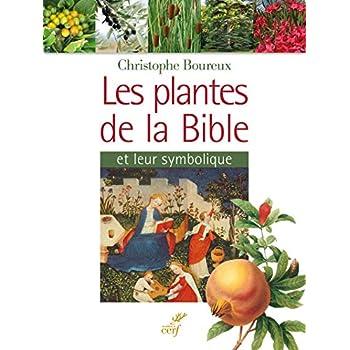 Les plantes de la Bible