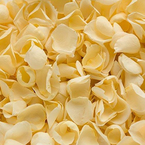 Coriandoli biodegradabili di petali di rosa, per matrimoni, Ivory, 2 l