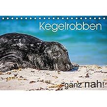Kegelrobben ganz nah! (Tischkalender 2017 DIN A5 quer): Faszinierende Nahaufnahmen von Kegelrobben in ihrem natürlichen Lebensraum. (Monatskalender, 14 Seiten ) (CALVENDO Tiere)
