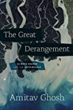 Image de Great Derangement : Climate Change and the Unthinkable (Berlin Family Lectures)