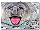 Wandkalender Antarktis 2015 A3 (inkl. DVD: Im Tiefflug zum Nordpol) [Alemania]