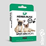 Natural Best Products herbamax Spot-On Drops/pipette cane gatto 5 x 1ml