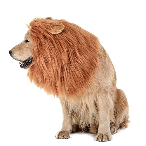 Migou Realistisches Pelzhundekostüm für Mittelgroße Bis Große Hunde, Fancy Dog Lion Mähne für Urlaubsfotografien Halloween-Weihnachtsfest-Festanlass