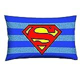 Warner Bros Superman Federa, Cotone, Blu/Azzurro, 50x80x0.5 cm