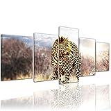 Bilderdepot24 Kunstdruck - Leopard - Bild auf Leinwand - 200x80 cm 5 teilig - Leinwandbilder - Bilder als Leinwanddruck - Wandbild Tierwelten - Wildtiere - afrikanische Wildkatze auf der Pirsch