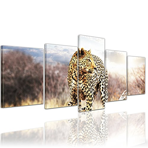 Mit Wilden Arten Katzen Von (Kunstdruck - Leopard - Bild auf Leinwand - 200x80 cm 5 teilig - Leinwandbilder - Bilder als Leinwanddruck - Wandbild von Bilderdepot24 - Tierwelten - Wildtiere - afrikanische Wildkatze auf der Pirsch)