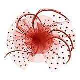 Tüll Fascinator Hüte mit Feder Blumen Haar Clip Haarreif Haar Accessoire Schleier Tea Party Hochzeit Kirche,Roter Haarschmuck Kopfschmuck Kopfbedeckung für Frauen