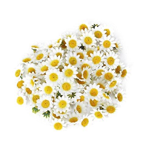 Daisy-04-farbe (ROSENICE Künstliche Gerbera Blumen Köpfe für DIY Hochzeit - 100 Stücke)
