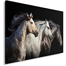Feeby Frames, Cuadro en lienzo, Cuadro impresión, Cuadro decoración, Canvas de una pieza, 60x80 cm, CABALLOS, ANIMALES, NATURALEZA, NEGRO, BLANCO