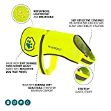 Premium Hunde Warnweste Neon öffentlichkeitswirksamer Sicherheit | Walking, Joggen, Training 16-130 lbs (EINWEG)
