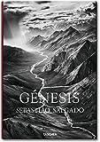 Salgado, Genesis