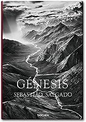 Fo-Salgado, Genesis -Espagnol-