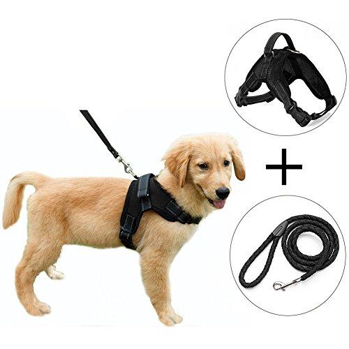 shabei Mesh Stoff Hund Weste Geschirr Weicher Verstellbarer Haustier Brust Geschirr mit Walking Leine für Winter