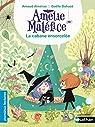 Amélie Maléfice - La Cabane ensorcelée - Lecture CP niveau 3 - Dès 6 ans par Alméras