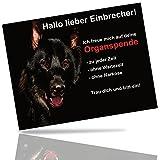 Hundeschild Schäferhund Warnung Lustig 20x15 cm Schwarz Warnschild Achtung Schild Hund Aluminium Spruch Garten Tür Mit Klebestreifen