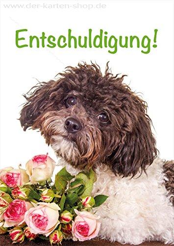 A6 Tierpostkarte, Postkarte, Entschuldigungskarte, Grußkarte Hund mit Rosen Entschuldigung im 3er Set