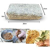Augproveshak Musgo Sphagnum 6L, Musgo seco Natural, Musgo de turba hidratante, Fertilizante orgánico de nutrición, Musgo Floral para Plantas en Maceta, Maceta