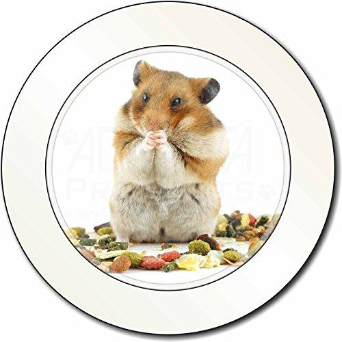 Lunch Box Hamster AutovignetteGenehmigungsinhaber Geschenk