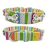 Stripey Hundehalsband mit Strass Knochen Stift für kleine mittelgroße und große Hunde