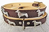 Lusy011 *DACKEL* Hunde Halsband, Leder, Halsumfang 28-32cm oder 30-36cm oder 36-41cm, BRAUN-Beige (36-41cm/45cm/20mm)