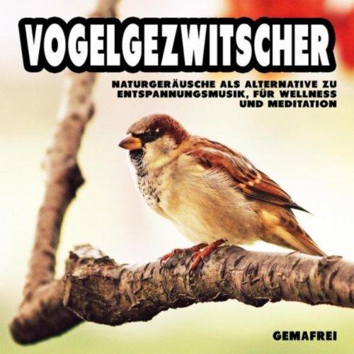 Vogelgezwitscher - Naturgeräusche als Alternative zu Entspannungsmusik, für Wellness und Meditation (gemafrei)