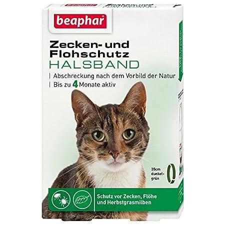 Zecken- & Flohschutz Halsband Katze | Schutz vor Zecken Flöhen | Wirkt 4 Monate | Katzenhalsband mit…