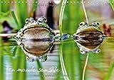 Un monde sensible : En macro ou au télézoom, divers animaux autour de nous. Calendrier mural A4 horizontal