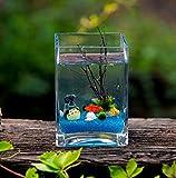 Jiangu Mini pecera, pecera de cristal cuadrado,...