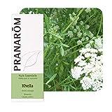 PRANAROM - Huile essentielle Khella - 5 ml