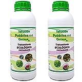 Castalia - Jabón Potásico Ecológico - Pack 2 de litros Total - Fertilizante e...