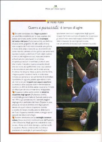 Zoom IMG-2 il maestro giardiniere segreti e