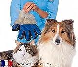 DegGod 1 Pezzo Guanto a Spazzola per animali Massaggio e Pulizia, Cani e gatti Pelo la pulizia Toelettatura e animale Grooming Elimina Morti peli Guanto Spazzola - DegGod - amazon.it