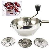 LARRY SHELL Grinder per Alimenti Manuale in Acciaio Inossidabile con 3 Dischi intercambiabili Facile da Pulire e da assemblare Ideale per preparare purè o zuppe di Verdure
