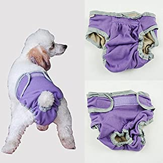 Dealglad Cosy Pet Dog Puppy Cotton Sanitary Physiological Menstrual Panties Underwear Diaper Pant Washable 51zhCmdJAfL
