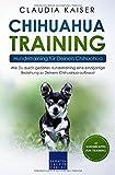 Chihuahua Training - Hundetraining für Deinen Chihuahua: Wie Du durch gezieltes Hundetraining eine einzigartige Beziehung zu Deinem Chihuahua aufbaust (Chihuahua Band, Band 2) - Claudia Kaiser