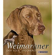 Weimaraner: Der edle Jagdhund (Cadmos Hundebuch)